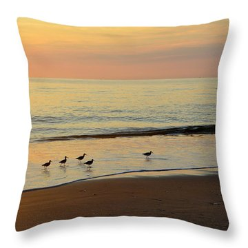 Throw Pillow featuring the photograph Shorebirds 9/4/17 by Barbara Ann Bell