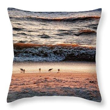 Throw Pillow featuring the photograph Shorebirds by Lars Lentz