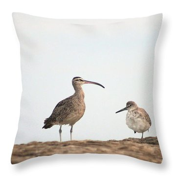 Shorebirds Of Windansea Beach Throw Pillow