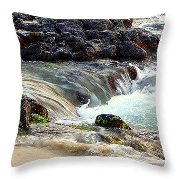 Throw Pillow featuring the photograph Shoreline by Lori Seaman