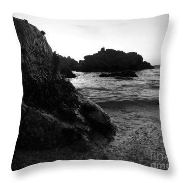 Shoreline Monolith Monochrome Throw Pillow