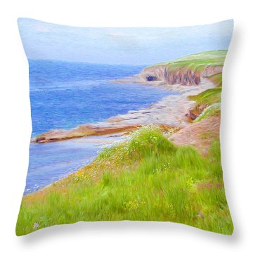 Shores Of Newfoundland Throw Pillow by Jeff Kolker