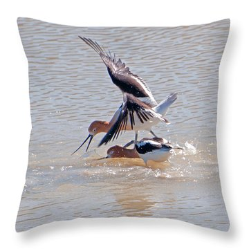 Short Conflict Throw Pillow