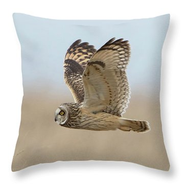 Short-eared Owl Hunting Throw Pillow