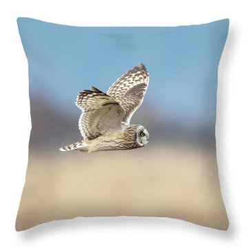 Throw Pillow featuring the photograph Short-eared Owl In Flight by Angie Vogel