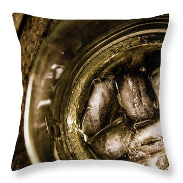 Shot Of Whisky On The Rocks Throw Pillow