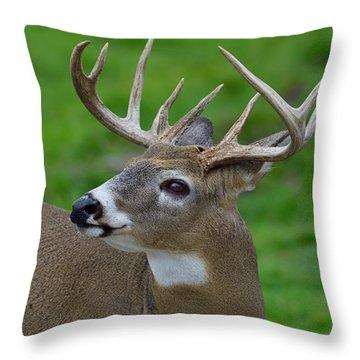 Shoulder Check  Throw Pillow