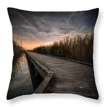 Shoveler Boardwalk Throw Pillow by Allen Biedrzycki
