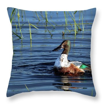 Shoveler Throw Pillow by Jean Noren