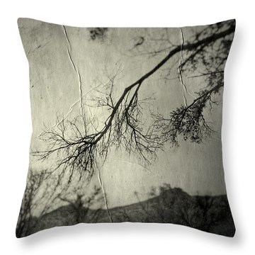 Throw Pillow featuring the photograph Show Me  by Mark Ross