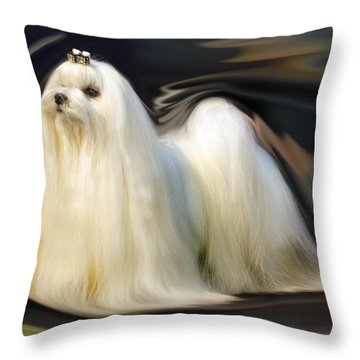 Show Stopper Throw Pillow by Graham Hawcroft pixsellpix