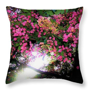 Shower Tree Flowers And Hawaii Sunset Throw Pillow