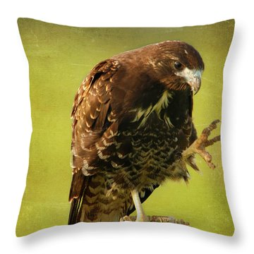 Throw Pillow featuring the photograph Showing Claws by Charles McKelroy