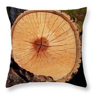 Showing Its Age Throw Pillow