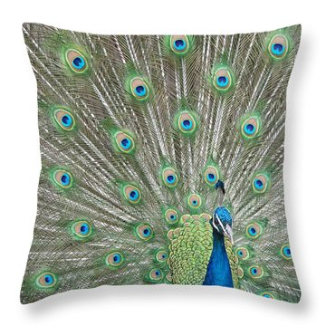 Throw Pillow featuring the photograph Showing Off by Margaret Bobb