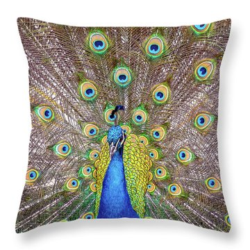 Showing Off..... Throw Pillow