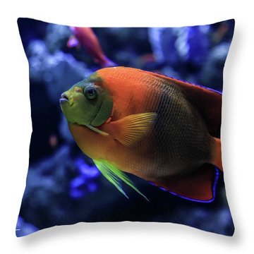 Showoff Throw Pillow