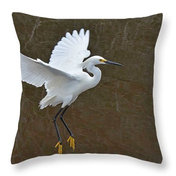Showy Egret Suspended Annimation Throw Pillow