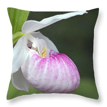Showy Ladyslipper Throw Pillow