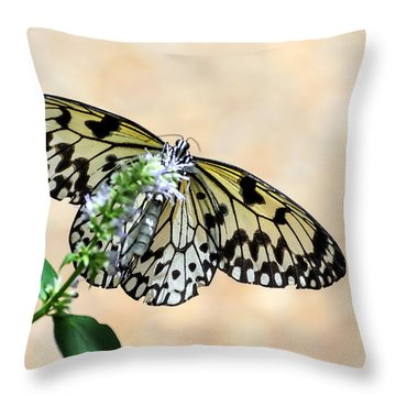 Showy Nymph Throw Pillow by Debbie Green