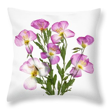 Showy-primrose Throw Pillow