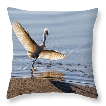 Showy Snowy Throw Pillow