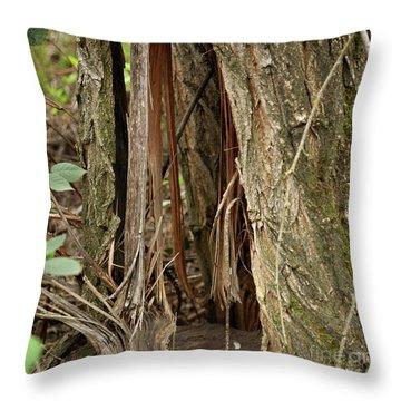 Throw Pillow featuring the photograph Shredded Tree by Carol Lynn Coronios