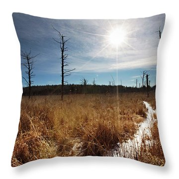 Throw Pillow featuring the photograph Shrub Swamp by Sue Collura