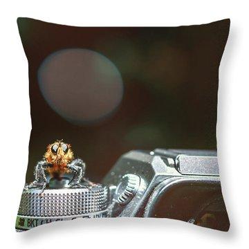 Shutterbug- Throw Pillow