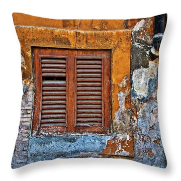 Throw Pillow featuring the photograph Shuttered by Harry Spitz