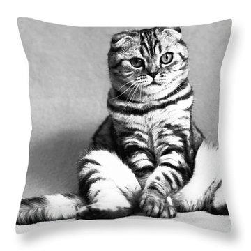 Shy Cat Throw Pillow