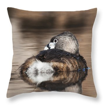 Shy Grebe Throw Pillow