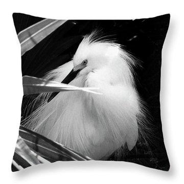 Shy Snowy Egret Throw Pillow