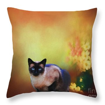 Siamese If You Please Throw Pillow by Suzanne Handel