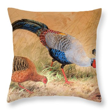 Siamese Pheasant  Throw Pillow by Joseph Wolf