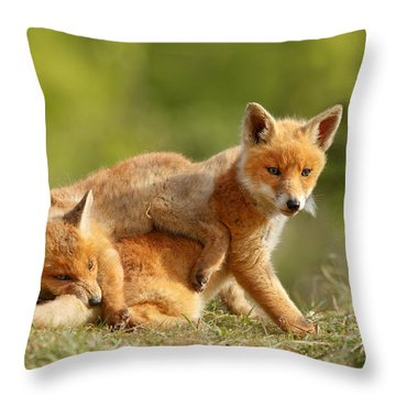 Sibbling Love - Playing Fox Cubs Throw Pillow by Roeselien Raimond