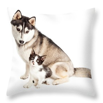 Siberian Husky Dog Sitting With Little Kitten Throw Pillow by Susan Schmitz