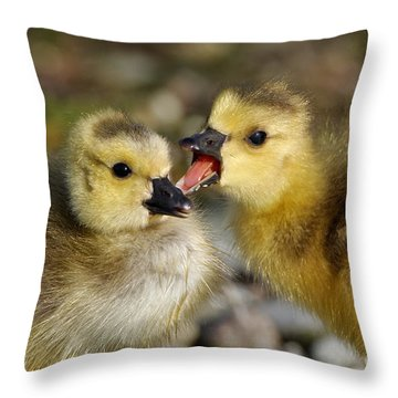 Sibling Love - Baby Canada Geese Throw Pillow