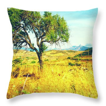 Throw Pillow featuring the photograph Sicilian Landscape With Tree by Silvia Ganora