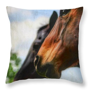 Side By Side Throw Pillow by Darren Fisher