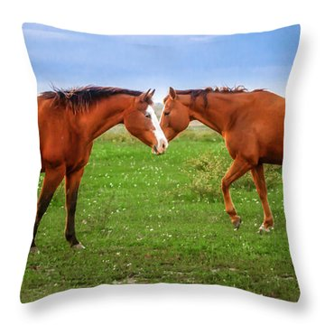 Throw Pillow featuring the photograph Side By Side by Melinda Ledsome