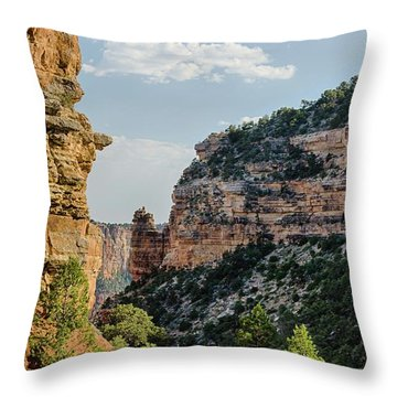 Side Canyon View Throw Pillow