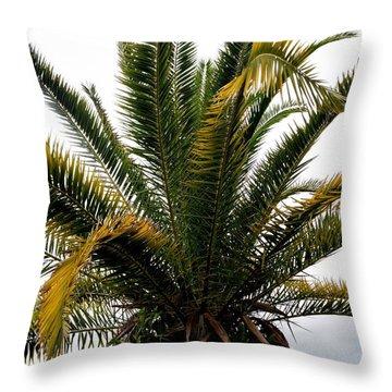 Sideshow Palm Throw Pillow