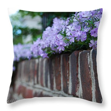 Sidewalk Art Throw Pillow by Linda Mesibov