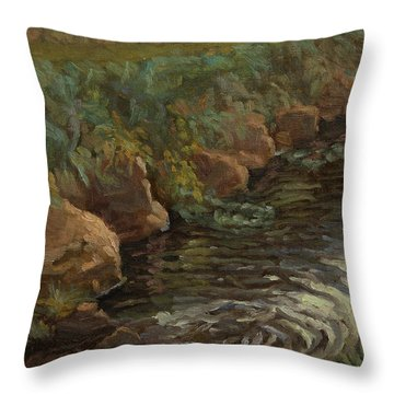 Sidie Hollow Throw Pillow