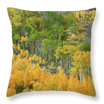 Sierra Autumn Colors Throw Pillow