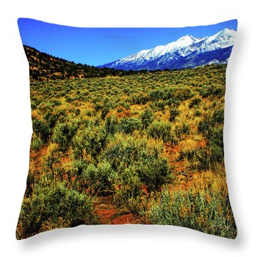 Sierra Blanca Throw Pillow