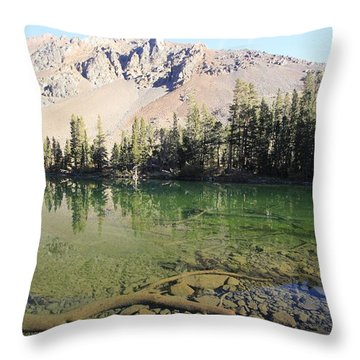 Throw Pillow featuring the photograph Sierra Clarity by Sean Sarsfield