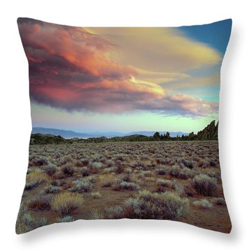Sierra Crescendo Throw Pillow