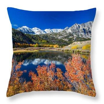 Sierra Foliage Throw Pillow